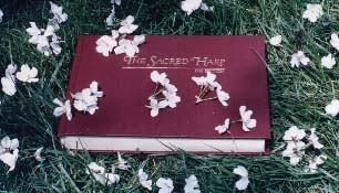 [photo of Sacred Harp tunebook on grass with fallen cherry blossoms]