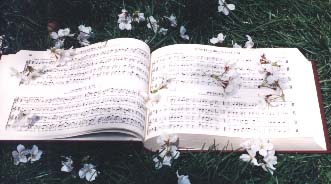 [photo of open Sacred Harp tunebook (1991 Edition) on grass with fallen cherry blossoms]